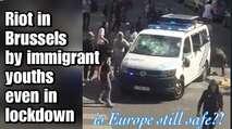 """Embedded thumbnail for """"Allahu akbar"""" – Hunderte Migranten randalieren in Brüssel"""